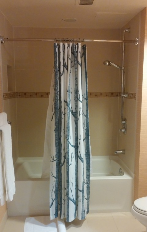 This shower is not the kind of shower we like.