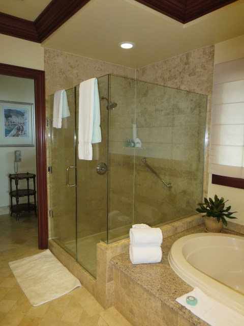 A nice big glass shower over one of the two hot tubs.
