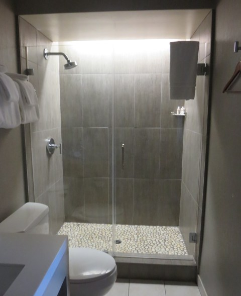 534 has a glass shower with a silver twig handle and a pebble floor