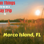 What You Must See on a Day Trip to Marco Island, FL