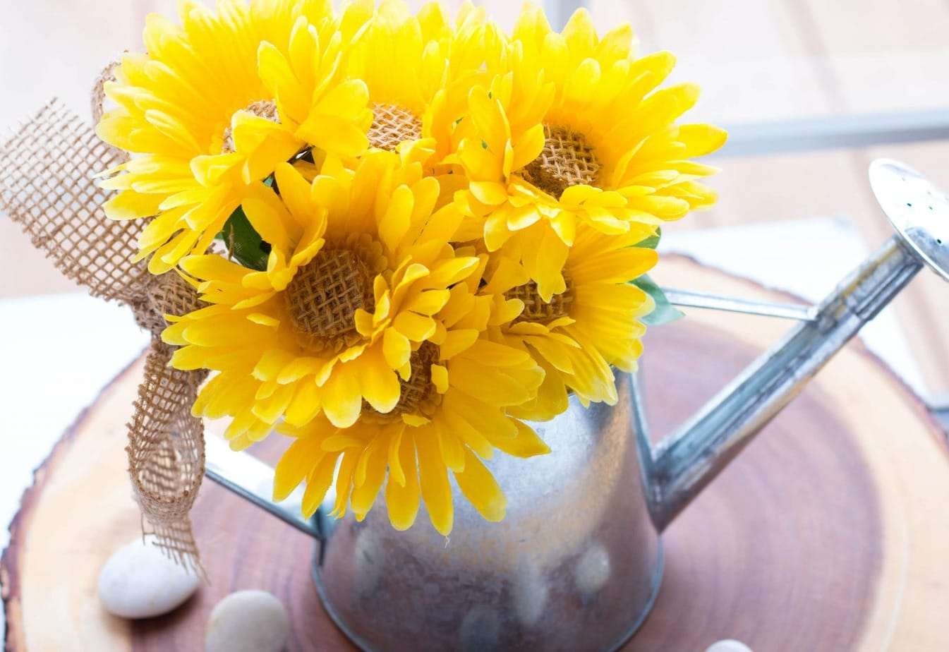 Watering Can with Daisies and Burlap Ribbon