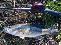 noppo3 Fishing - 釣魚迷