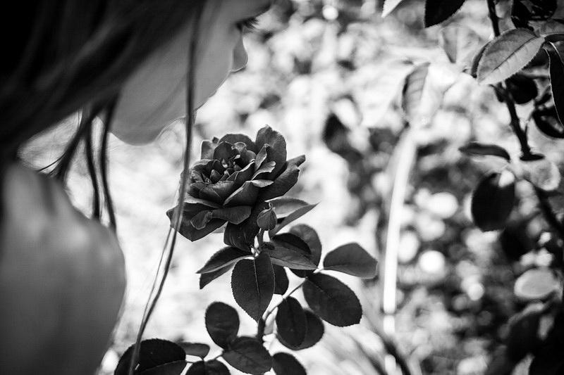 child-flower-copil-floare