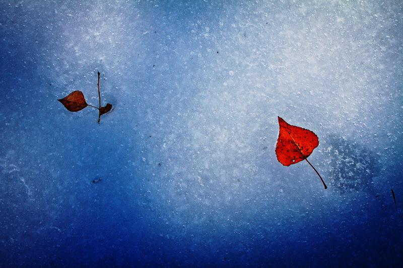 craiova_feb2012_02_c_resize