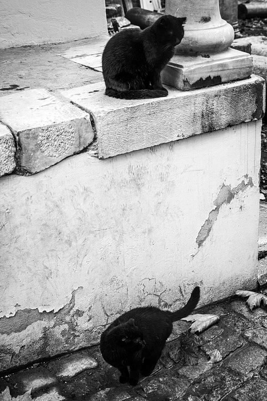 2014-10-30 Istanbul 006_resize