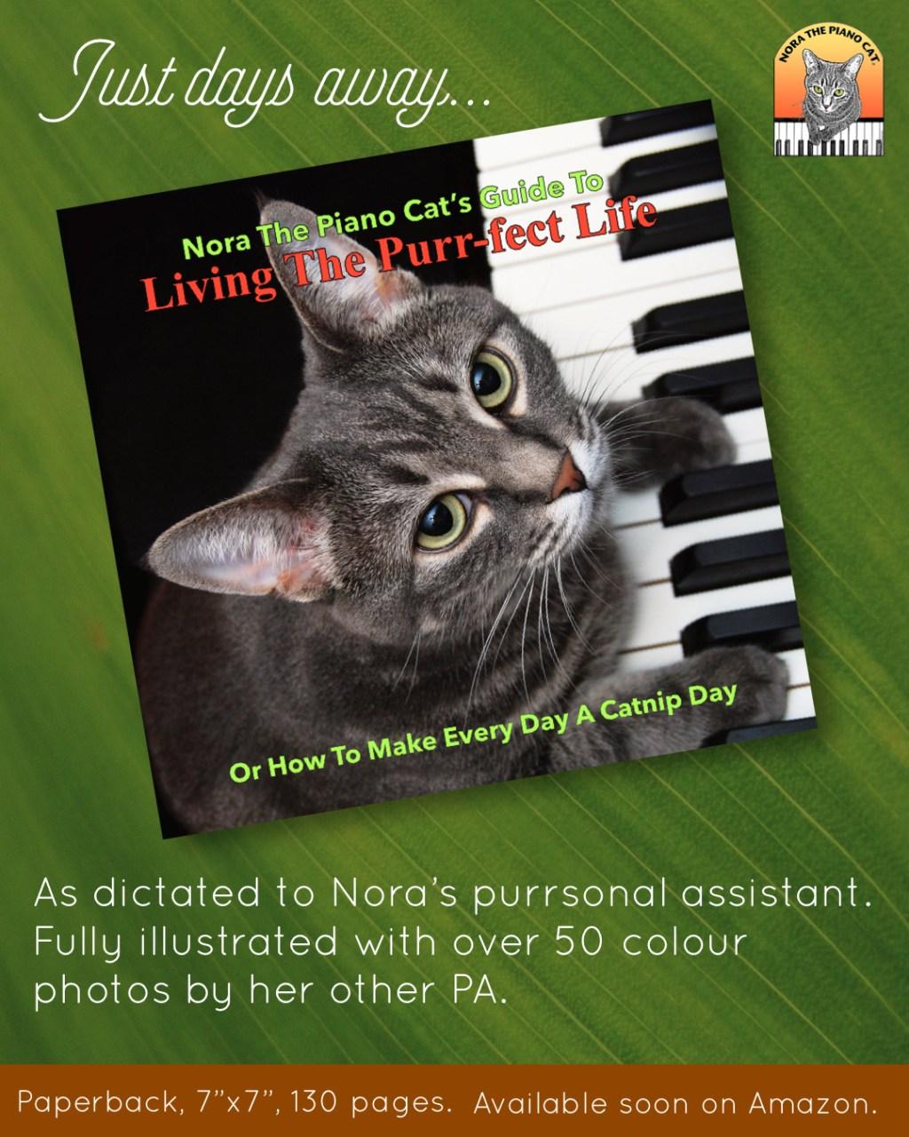 New book from Nora The Piano Cat.