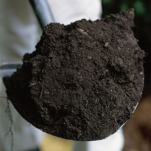 bulk soil spreading services - norcal ag service - delivery to northern and central california