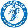 Photo de l'équipe FC Bischwiller