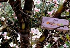 filone-frutta-loison
