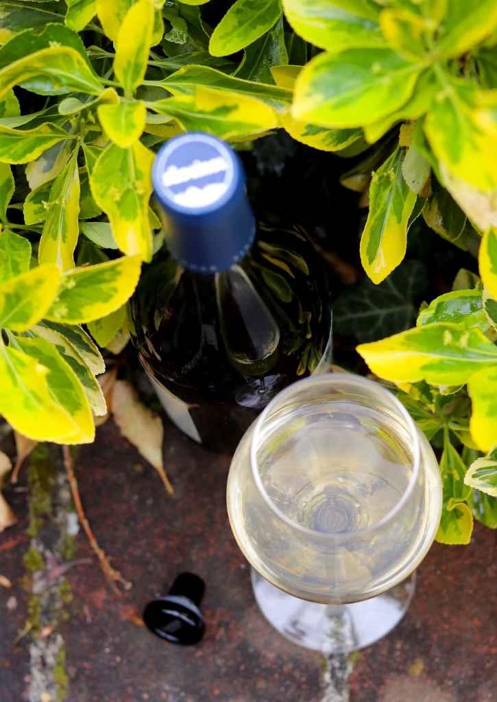 sudtirol wines