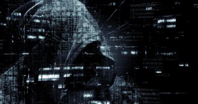 Avalanche-Botnetz: BSI weitet Schutzmaßnahmen aus. Auch Andromeda-Botnetz zerschlagen