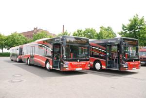 Zwei-Buszüge-23-m-lang-aus-Osnabrück-in-BS-13-06-2013