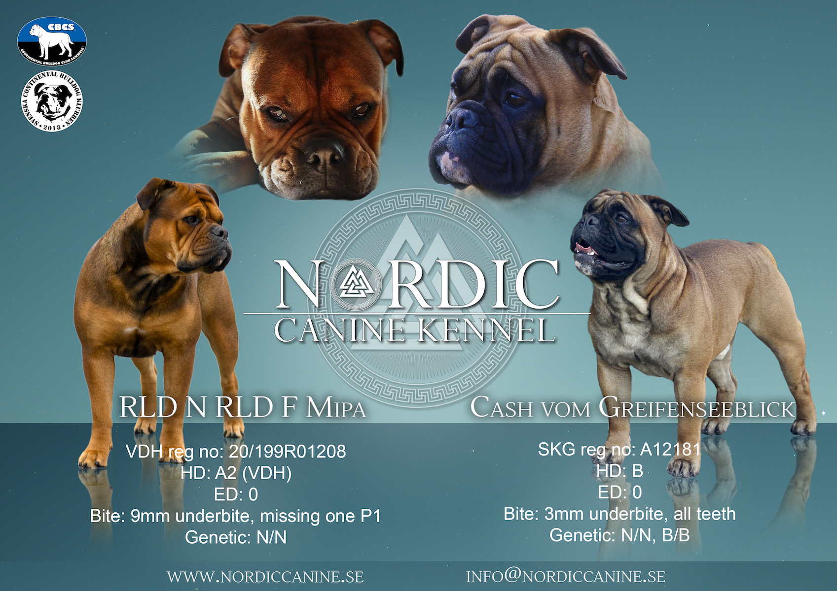Nordic Canine – Kyra x Cash