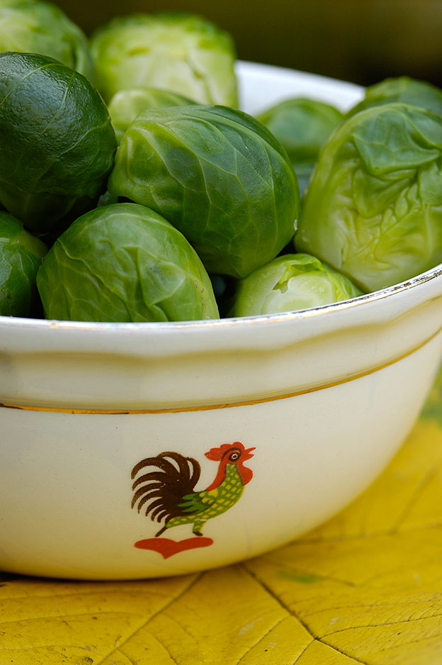 The brussels sprouts are served in a bowl I inherited from my grandmother