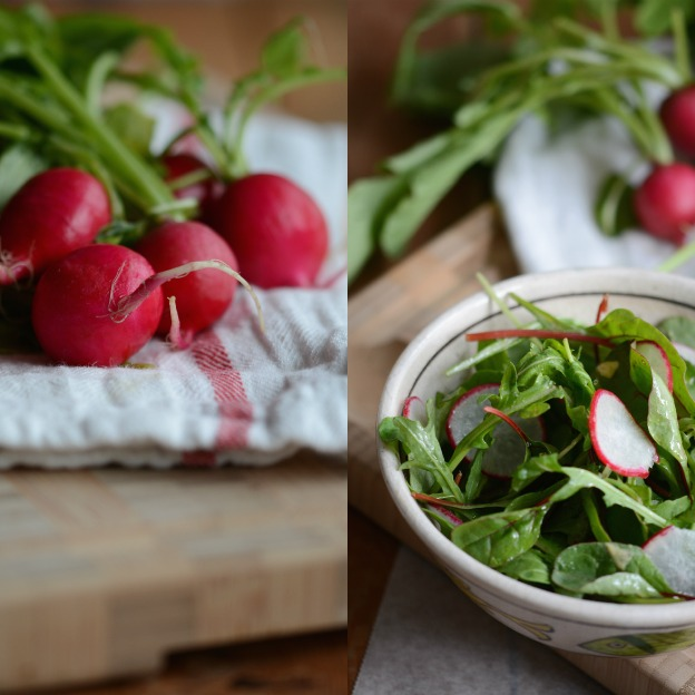 Salad with radishes