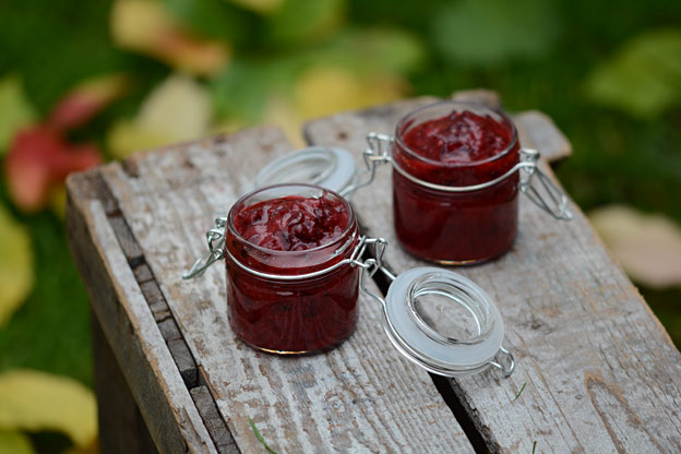 Lingonberry jam, a gift of Autumn