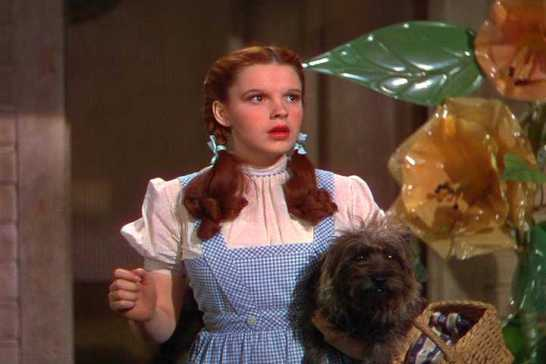Dorothy with Toto staring in wonder at Oz