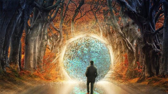 Person walking in the woods approaching a magical portal