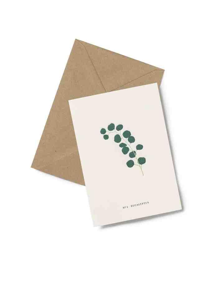 Kartotek 'No2 EUCALYPTUS' Greeting Card