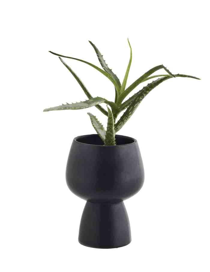 Black Stoneware Plant Pot, Madam Stoltz