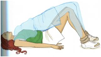 exercice lombaires et ischio-jambiers