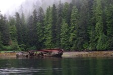 Neva Strait Derelict, photo by Andrew Cooper