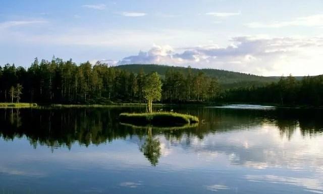 typisch finnisch, Finnland Blog, Sauna, Elche