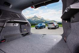Die XC Modelle machen den größten Teil der Volvo Zulassungen aus