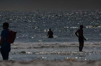 """Beim Bad in der Nordsee vor der Helgoländer Düne tauchen nicht nur menschliche """"Mitbader"""" auf."""