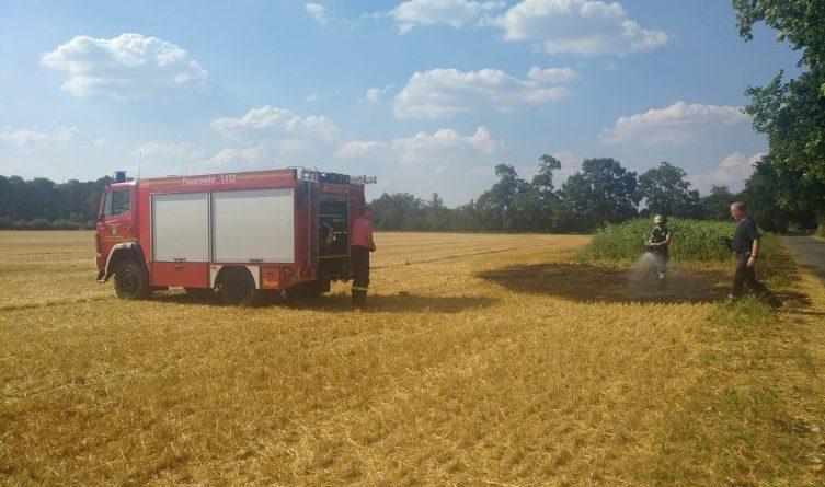 Erneuter Flächenbrand in Osterbrock im Haarweg Foto: NordNews.de