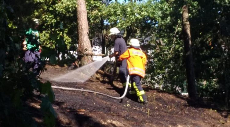 Lingen/Darme - Brand hinter dem Waldstadion - Feuerwehr verhindert Waldbrand Foto: NordNews.de
