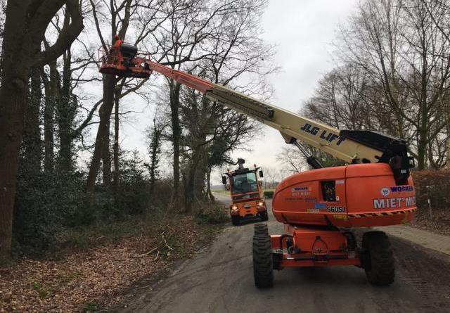 Die Entfernung von Totholz und überhängenden Ästen ist derzeit Aufgabe des Harener Werkhofes. Foto: Stadt Haren