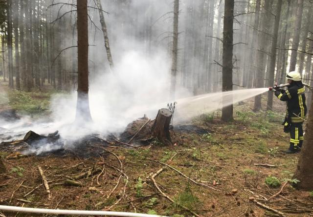 Sögel - Wieder Feuer im Wald - Polizei ermittelt - Foto: SG Sögel / Feuerwehr
