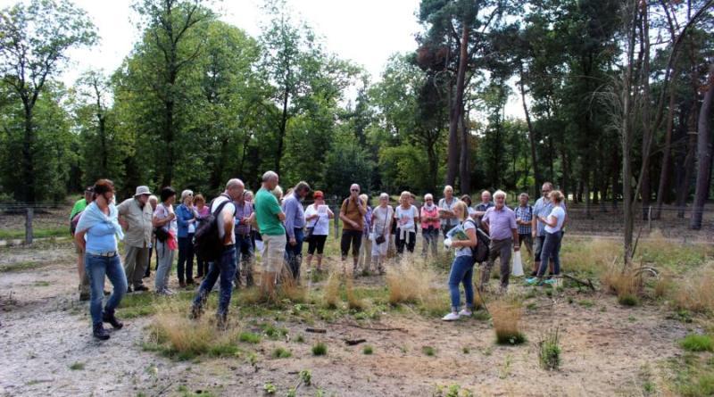 Mit dem Naturschutzranger durch den Wacholderhain Bardel - Foto: Landkreis Grafschaft Bentheim