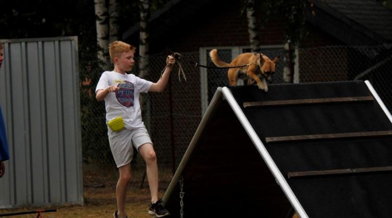 Dein bester Freund - der Hund - Ferienprogramm beim Schäferhundeverein Emsbüren - Foto: Schäferhundeverein Ortsgruppe Emsbüren