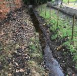 Damit das Wasser in den Gräben tatsächlich fließen kann, ist eine Reinigung in jedem Jahr notwendig. Aktuell werden im Stadtgebiet die sogenannten Gewässer dritter Ordnung durch eine Fachfirma gereinigt. Foto: Stadt Papenburg