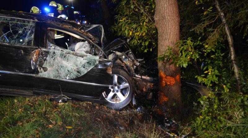 Lähden - Herzlake - Alkoholisierter Fahrer prallt gegen Baum - Foto: NordNews.de