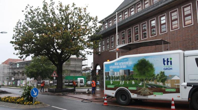Die TFI®Methode kam auch bei der Friedenseiche vor dem Polizeikommissariat zum Einsatz. Foto: Stadt Meppen