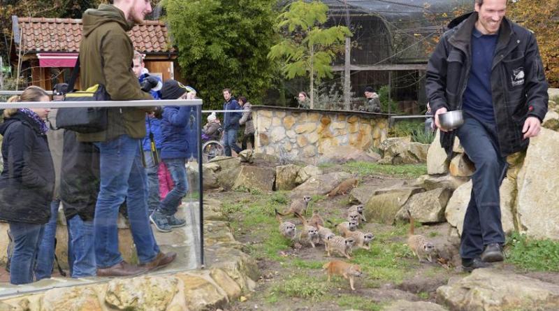 """Silberjubiläum für den """"Tag der offenen Tür"""" im Tierpark Nordhorn - Freier Eintritt - Foto: Franz Frieling"""