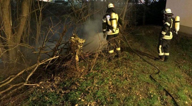 Kleiner Flächenbrand an Weidenstraße in Neuenhaus - Foto: Feuerwehr Neuenhaus