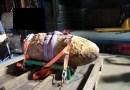 Weltkriegsbombe am Domhof entschärft Bombenfund in Meppen - Bombe - Foto: NordNews.de Übersicht Übersicht2 Übersicht1