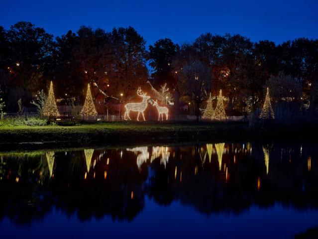 Nordhorn leuchtet im Advent - VVV und Tierpark Nordhorn bringen trotz Corona Glanz in die Stadt - Foto: Franz Frieling