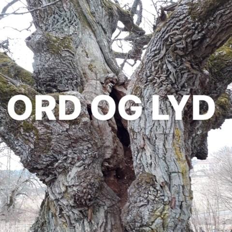Nordspråks høstkursus: Lyrik og Lydfortællinger – tilmeldingen er åben!