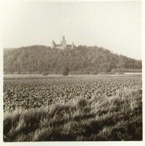 Marienburg Ansicht1