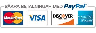 logo_sakra_betalningar_med_paypal_se