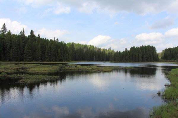 Algonquin Provincial Park Ontario Regrets
