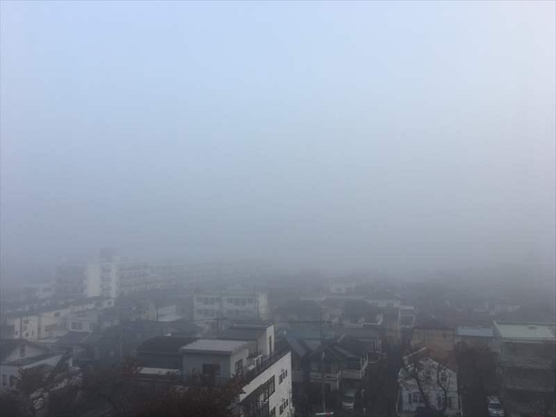 マザー牧場は霧!!