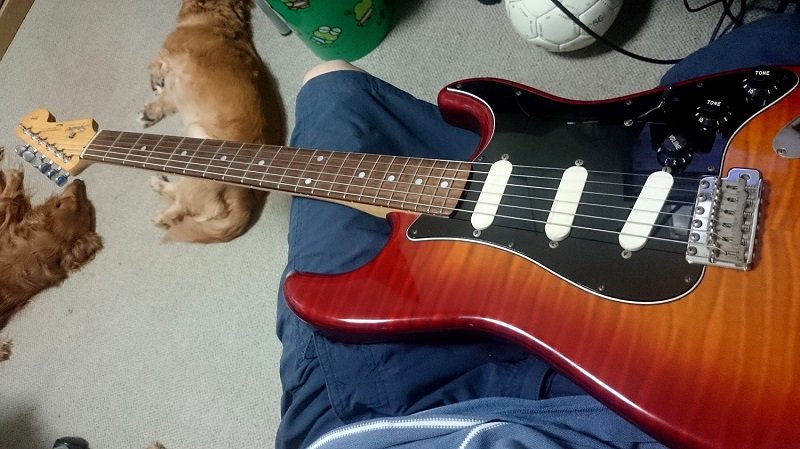Squier SST-39 ギター 安いわりに良い!