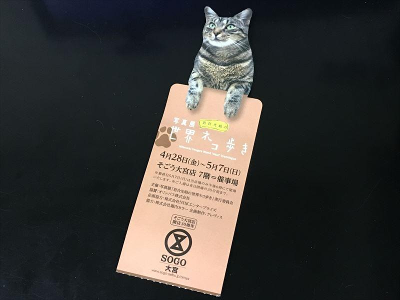 「3年続ければ形になりますよね」 写真家 岩合光昭の世界ネコ歩き 写真展を見て。