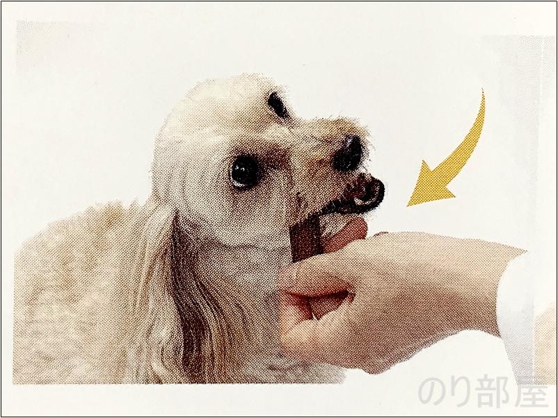 犬の歯磨きガム(デンタルガム)を噛まずに飲み込んでしまう犬の場合はガムを持ちながら左右均等に噛ませましょう【必見】犬の歯磨きで歯周病や病気を防ぐオススメの方法。放置すると頬に穴が空きます。歯磨きを嫌がる犬には水やご飯に混ぜて予防を!